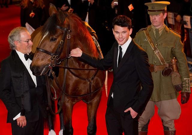 War-Horse6