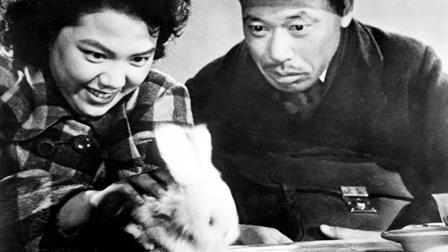 渡辺とトヨと変なウサギ
